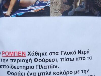ΧΑΘΗΚΕ Ο ΡΟΜΠΕΝ ΑΠΟ ΓΛΥΚΑ ΝΕΡΑ / ΦΟΥΡΕΣΙ Σκύλος- Γλυκά Νερά